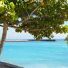 Nos locations St-Pierre de la Réunion
